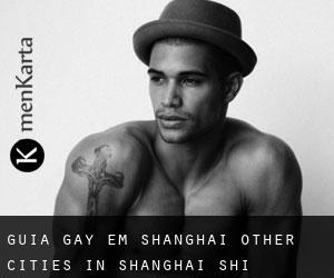 Guia Gay em Shanghai (Other Cities in Shanghai Shi, Shanghai Shi)